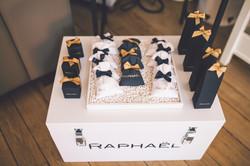 RAPHAEL-7456