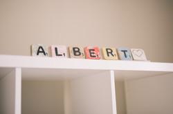 ALBERT-9055
