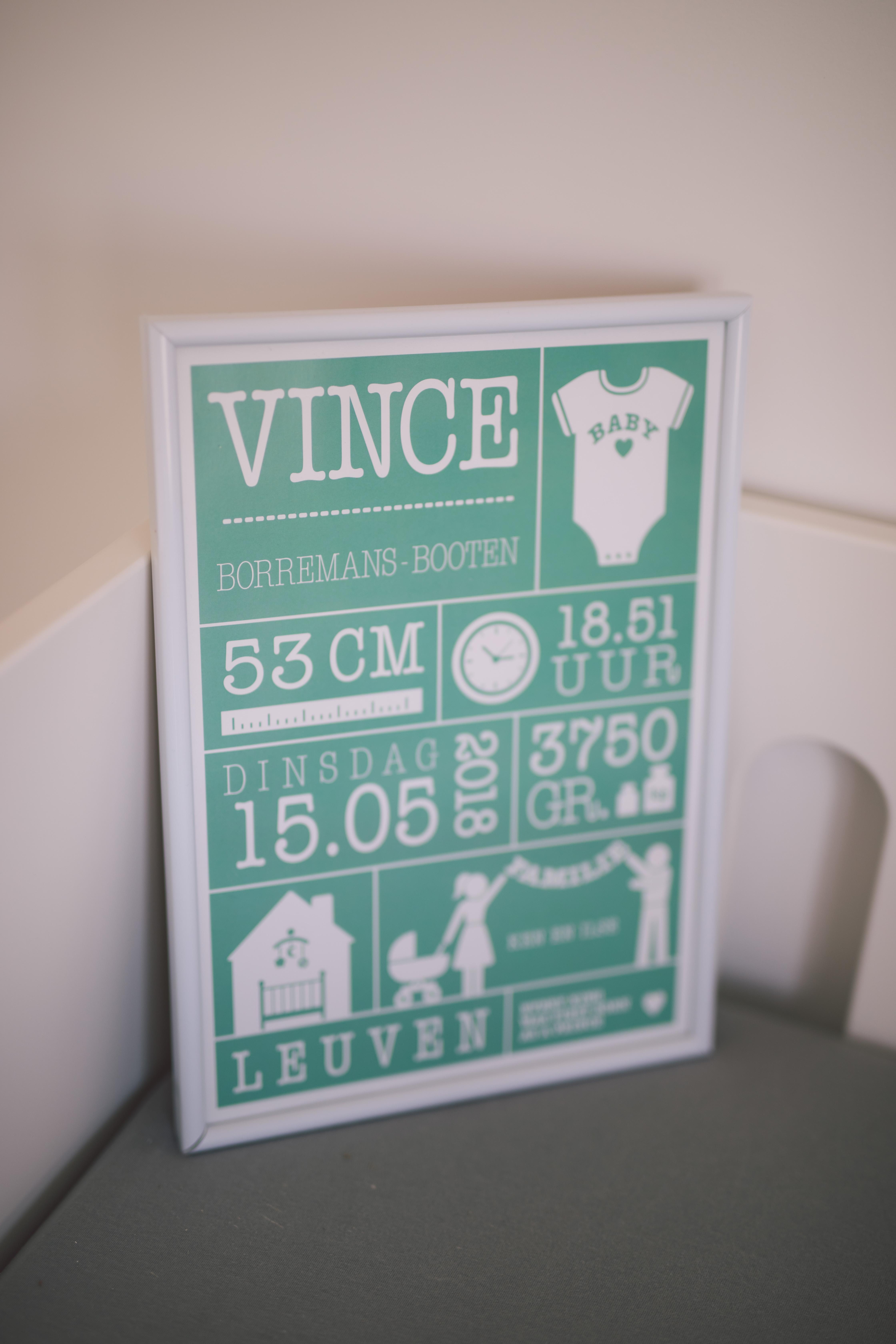 Vince-4