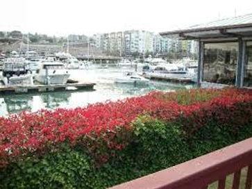 Johnnys Dock.jpg