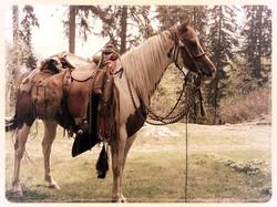 Pawnee à l'indienne..