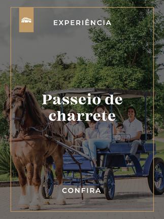 Carriage Tour at Hotel Fazenda Dona Carolina