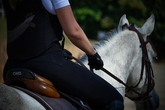 Equitação.jpg