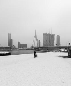Rotterdam Maaskade