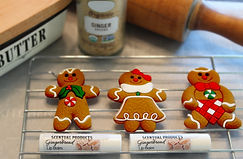 website gingerbread.jpg