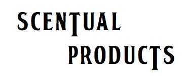 Logo Small Display.png