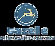 Gazelle Berlin