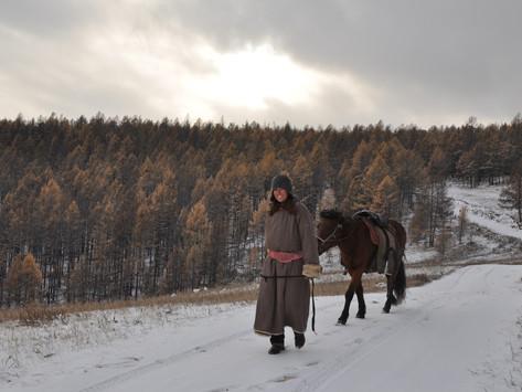 Finding Zaya: A QUEST IN MONGOLIA