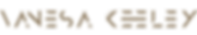 Vanesa Davila_Logo 2019-10.png