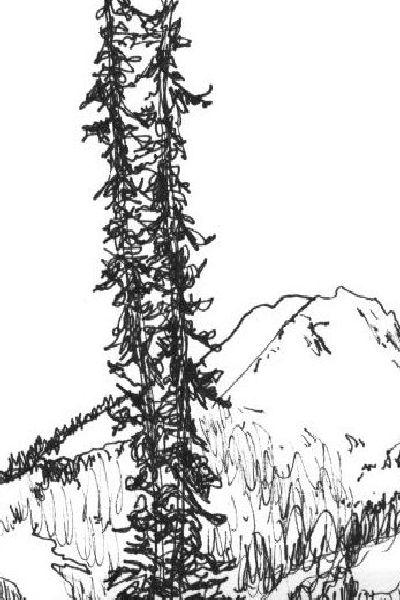 vertical Whistler