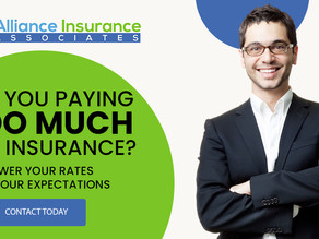 Am I paying too much for Insurance?