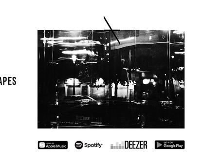 "HARING - Nieuwe single ""Language Shapes Your Mind"" nu beschikbaar!"