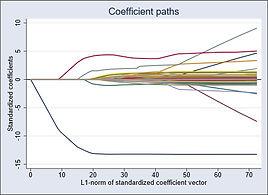 Lasso, coefficient paths graph_edited.jp