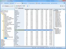 WordStat - Dictionary analysis