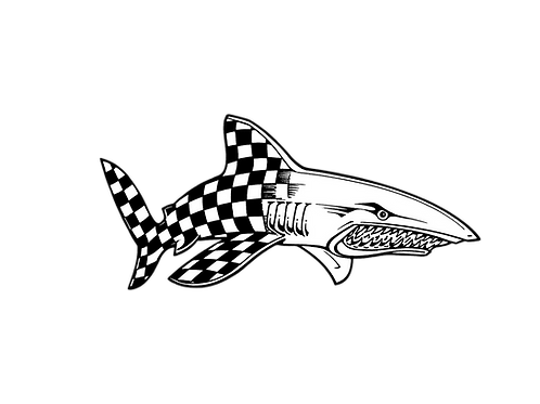 RACING SHARK MOTORSPORTS OFFICIAL DECAL - CHECKERED