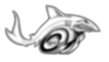 Racing Shark Logo Plain with Wheels - PN