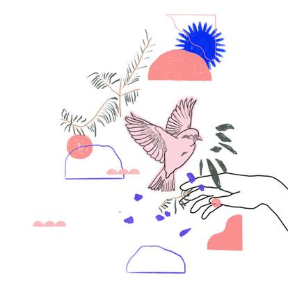 The Nightingale Illustrations