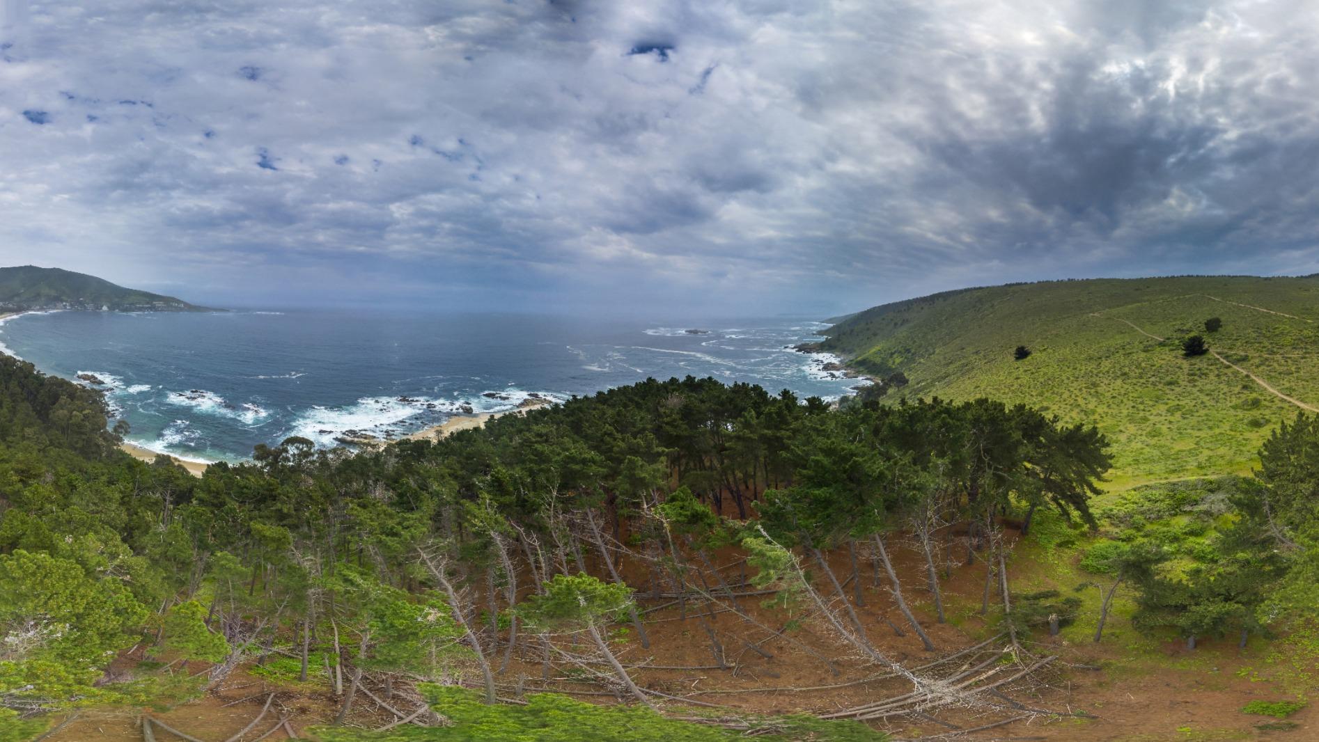 Punta Puyai Papudo