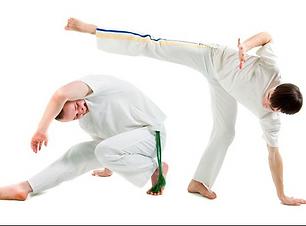 capoeira kids.png