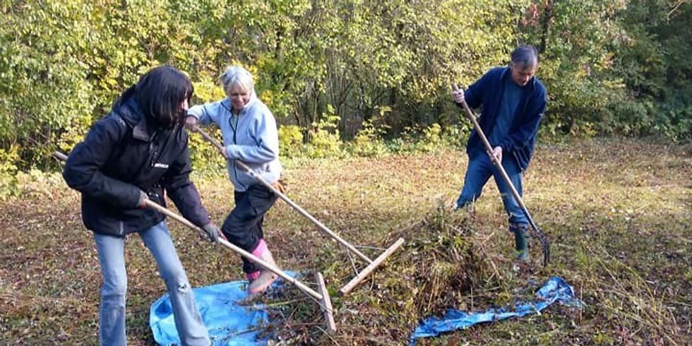 Bray Pit meadow rake