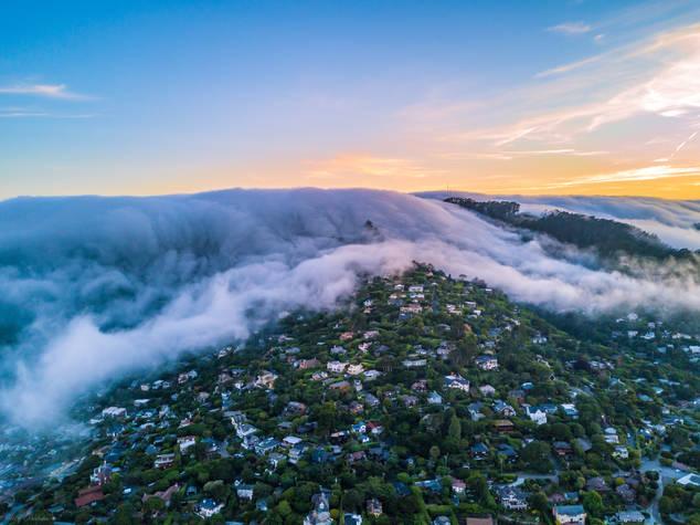 The Fog Blanket