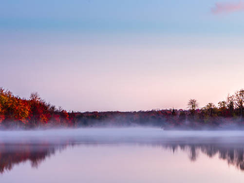 Foggy Sunrise at Tobyhanna State Park