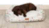 ck_novelty_bed-removebg-preview.png