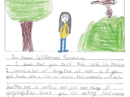 ELEMENTARY MY DEAR WATSON: WILDERNESS EDUCATION HELPS PREPARE THE NEXT GENERATION OF ENVIRONMENTAL S