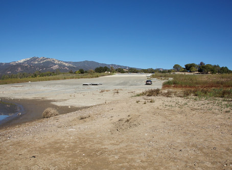 WILDERNESS OBSERVATION: DROUGHT IN CALIFORNIA CHAPARRAL