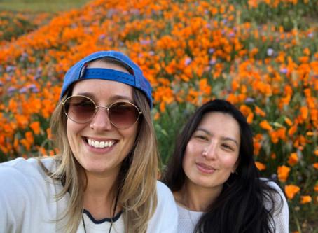 SOUTHERN CALIFORNIA WILDFLOWERS– BEAUTIFUL BUT SOMETIMES DANGEROUS
