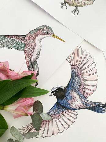 pastel birds 2.jpg