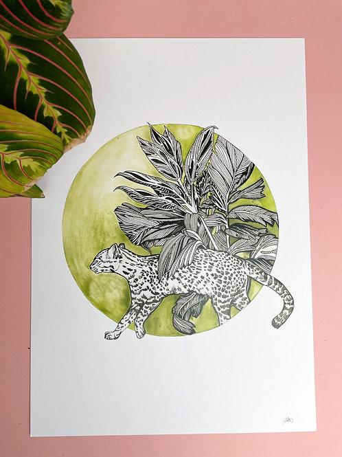 A3 Green Tropics Print