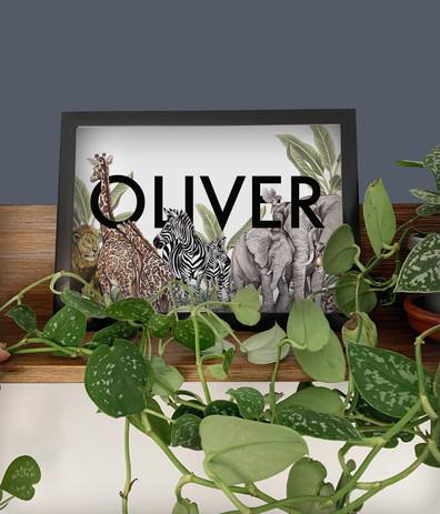 oliver visuak.jpg