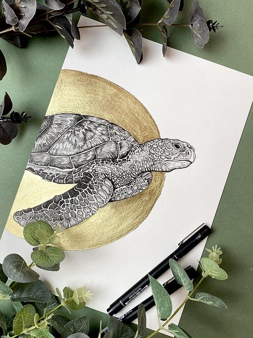 Mr Turtle - Gold Leaf Edition