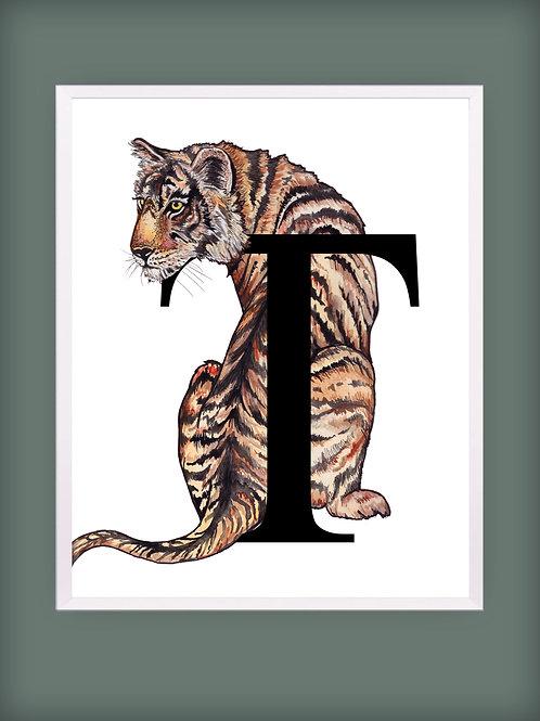 Tiger 'T'