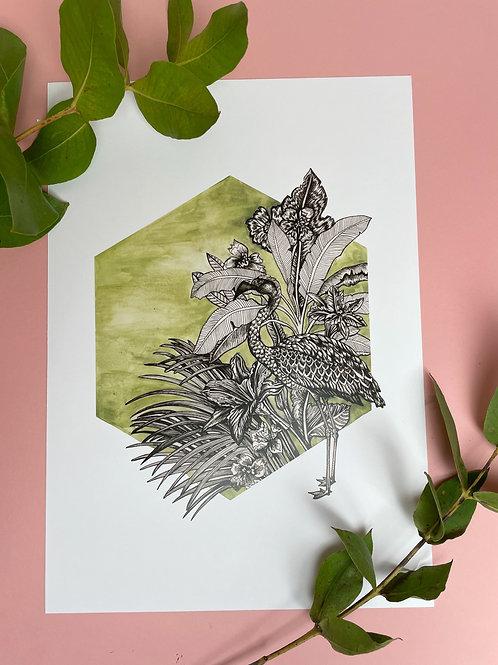 A3 Flamingo Lingo Print