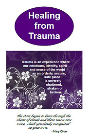 Haven Society Healing from Trauma booklet