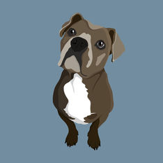 Dog-Illustration.jpg