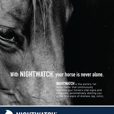 NIGHTWATCH Flyer Design