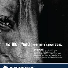 NIGHTWATCH Flyer Design
