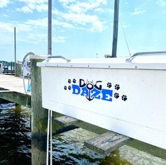 Dog Daze Dock Box