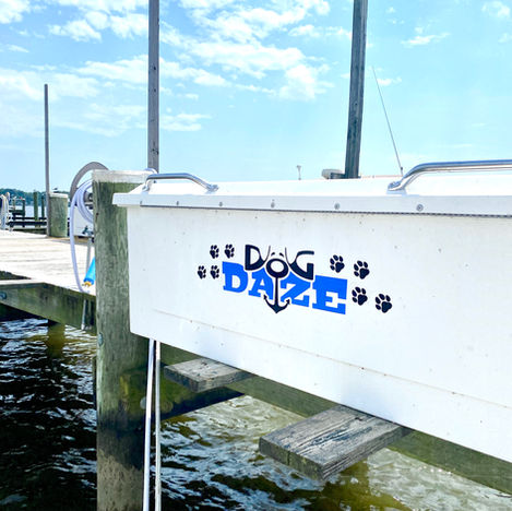 Dog Daze Dock Box