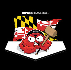 Ripken Baseball Retail Shirt Design
