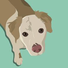 Doggie-Illustration.jpg