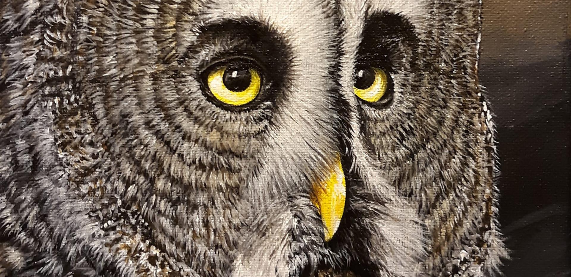 Great Gray Owl_ Blue Wolf Design