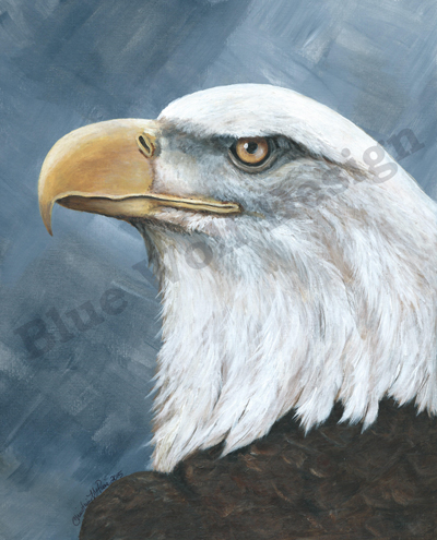 Bald Eagle_ Blue Wolf Design