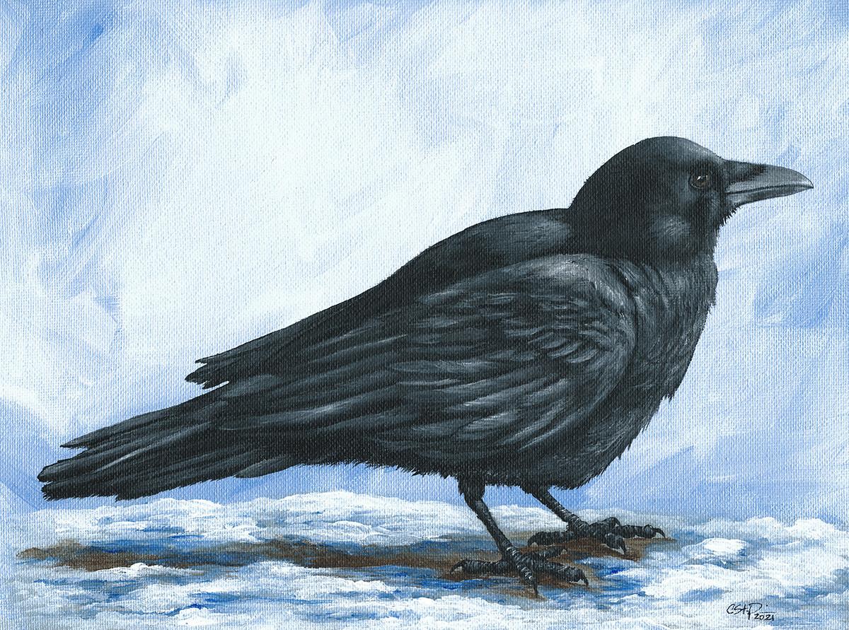 Winter Crow _ Blue Wolf Design