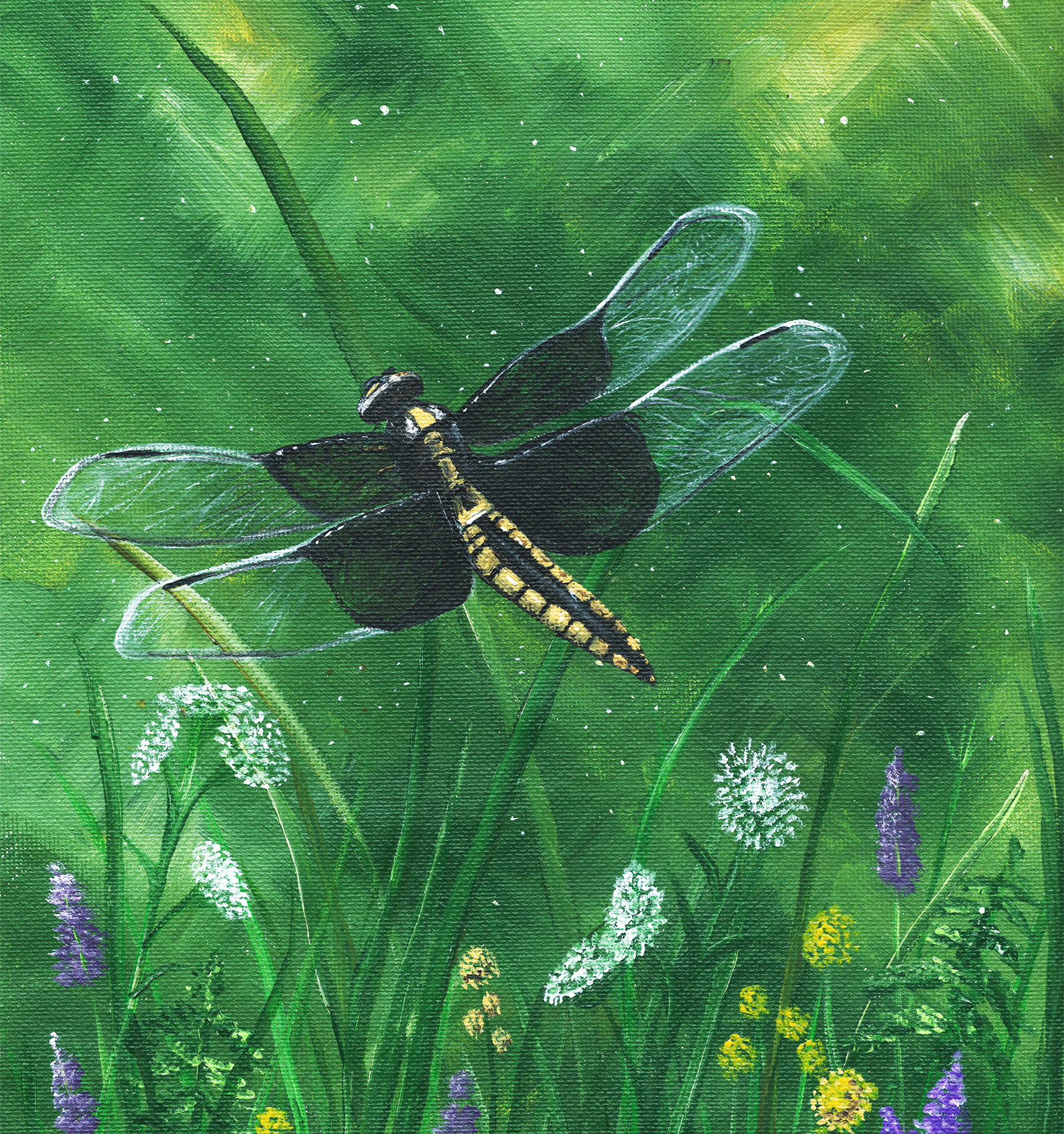 Dragonfly _ Bluewolfdesign