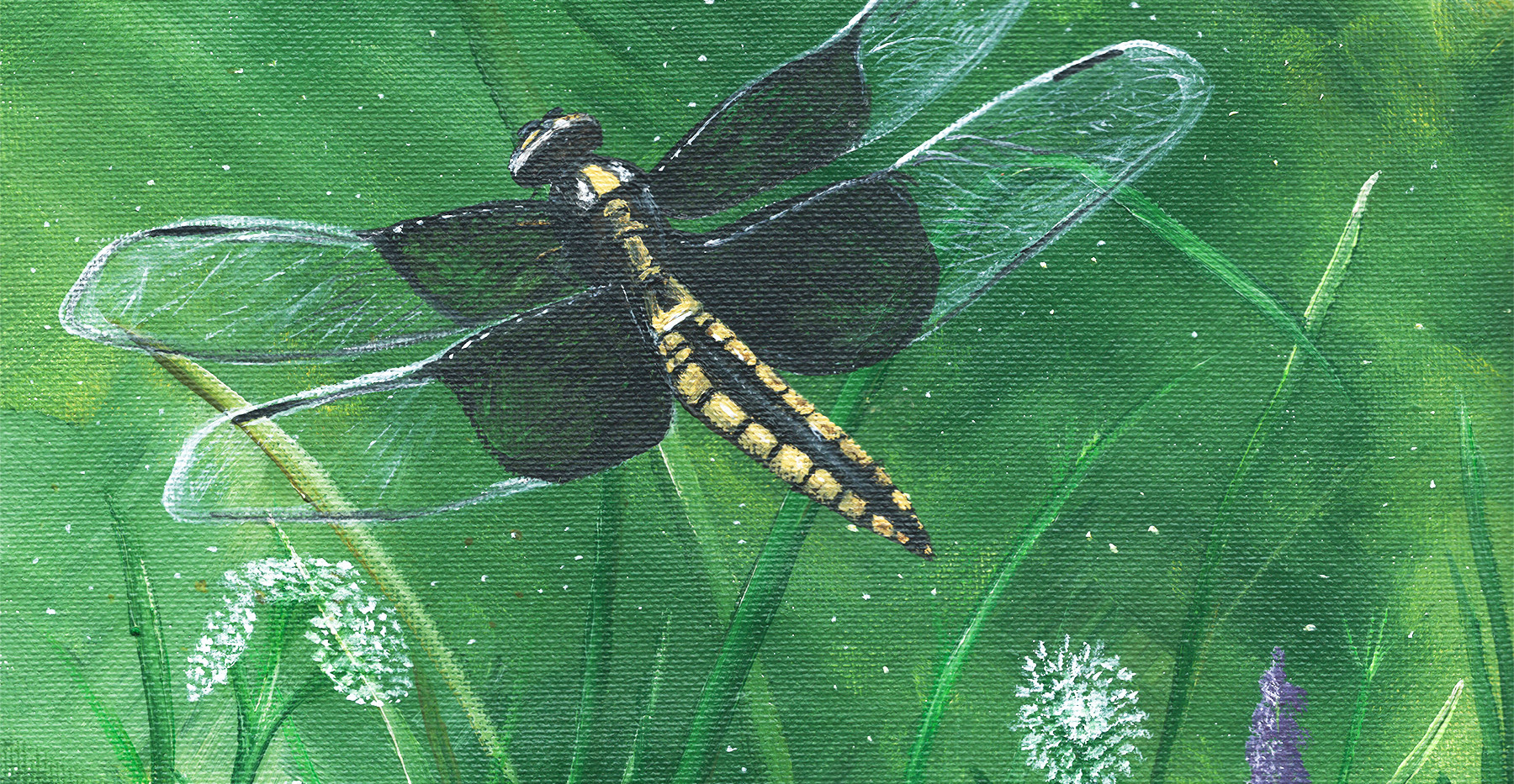 Dragonfly _ Blue Wolf Design