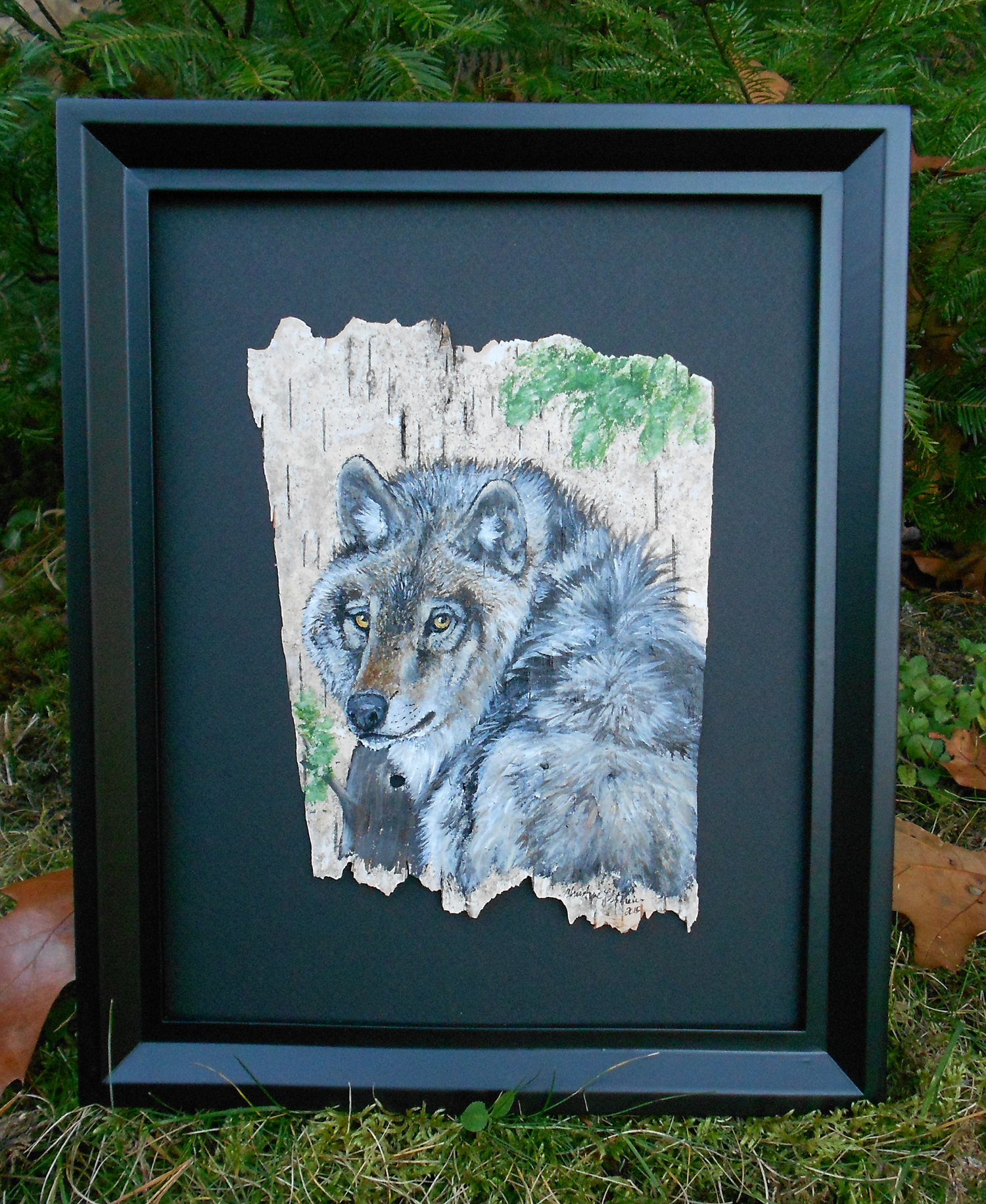 Wolf _ Birch Art Painting